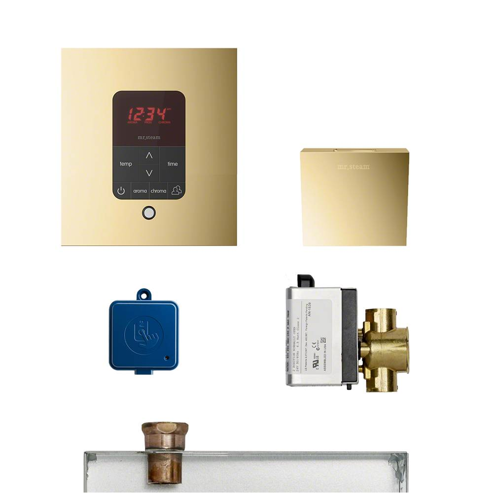 Mr. Steam  Steam Shower Control Packages item MSBUTLER1SQ-PB